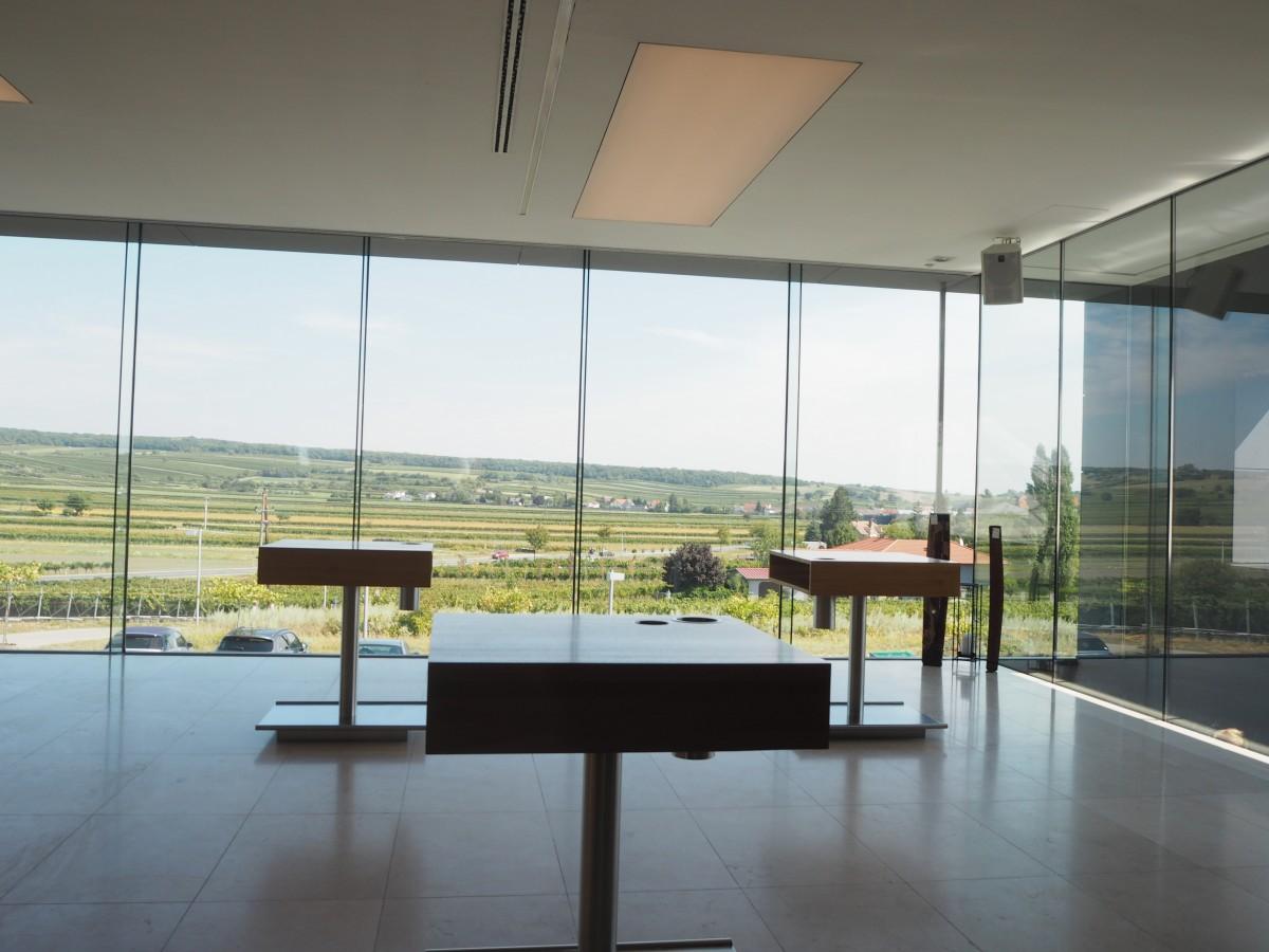 Ausblick aus dem Weingut Hillinger Jois.