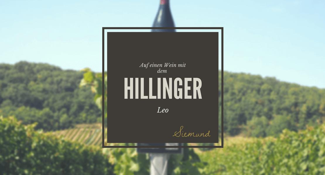 Weingut Hillinger in Jois Safaritour Bericht Wein Burgenland
