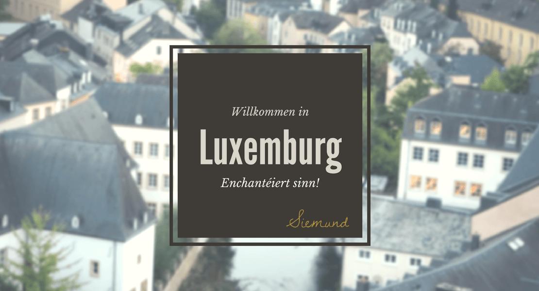 Luxemburg Sommerschule Cityguide Lingscape Luxemburgisch lernen