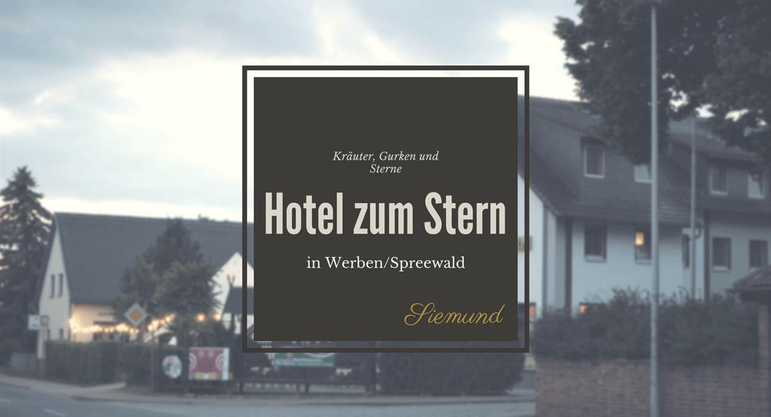 Ich habe ein Wochenende im Hotel zum Stern in Werben im Spreewald verbracht, samt Kahnfahrt und leckerem Kräutermenü. Lies mehr auf msiemund.de!
